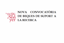 Convocatoria de una beca de colaboración en apoyo a la investigación